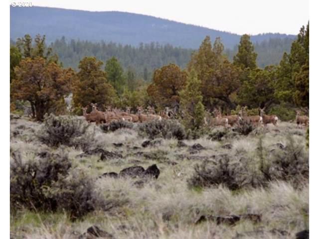 Buck Creek Highlands, Silver Lake, OR 97638 (MLS #20410888) :: Gustavo Group