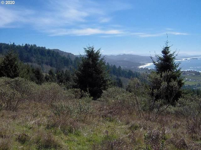 0 Harbor Hills Hts, Brookings, OR 97415 (MLS #20422543) :: Premiere Property Group LLC
