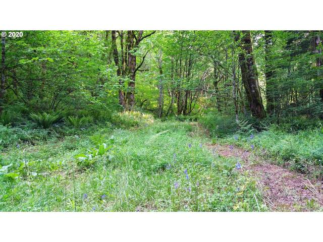 602 Wildlife Dr, Washougal, WA 98671 (MLS #20426238) :: Townsend Jarvis Group Real Estate