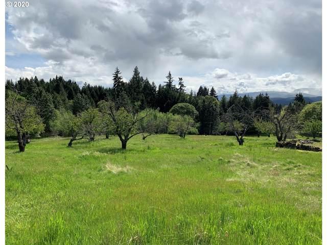 845 Grangeview Pl, White Salmon, WA 98672 (MLS #20428054) :: Stellar Realty Northwest