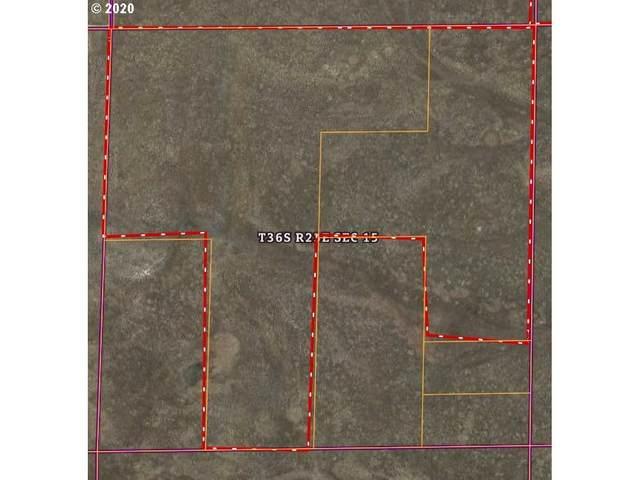 36S23E000320000, Plush, OR 97637 (MLS #20430127) :: Premiere Property Group LLC