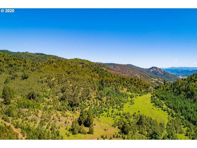 0 Riddle Bypass Rd, Riddle, OR 97469 (MLS #20430938) :: Premiere Property Group LLC