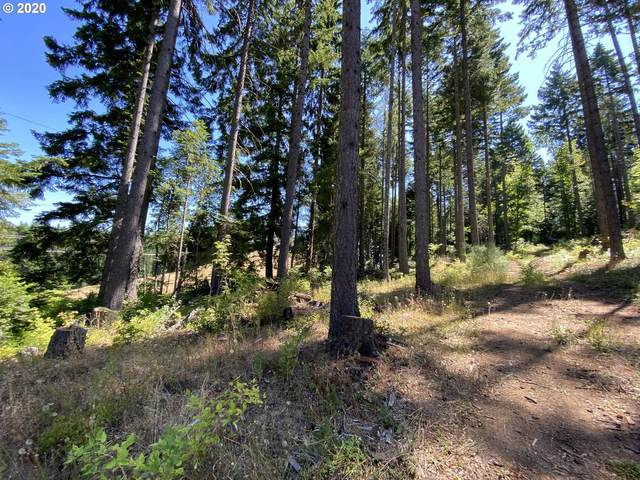 Lacock-Kelchner Rd, Underwood, WA 98651 (MLS #20434188) :: Fox Real Estate Group