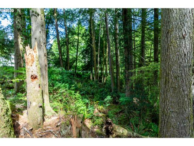 West Devils Lake Rd, Lincoln City, OR 97367 (MLS #20434322) :: Beach Loop Realty