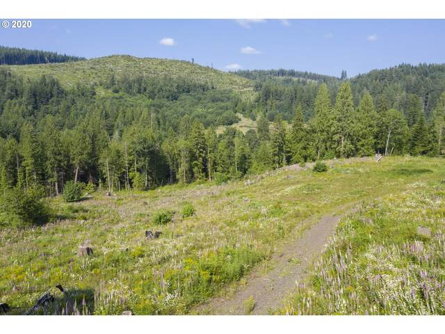 53321 E Marmot Rd, Sandy, OR 97055 (MLS #20438493) :: Premiere Property Group LLC