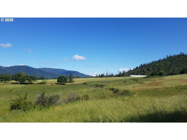 1100 Panther Gulch Rd, Williams, OR 97544 (MLS #20441451) :: Premiere Property Group LLC