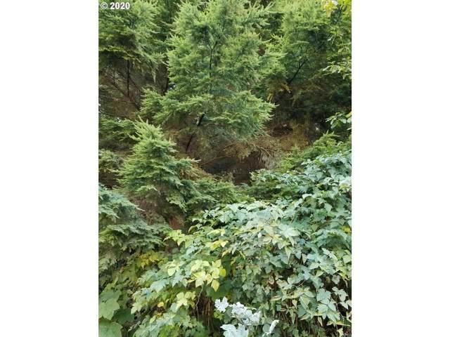 105 Deerlane Dr #105, Otis, OR 97368 (MLS #20453558) :: McKillion Real Estate Group