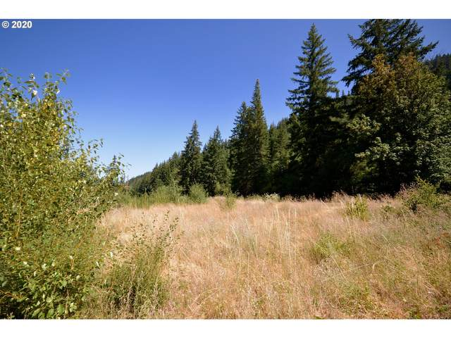 4661 Lost Lake Rd, Mt Hood Prkdl, OR 97041 (MLS #20456207) :: McKillion Real Estate Group