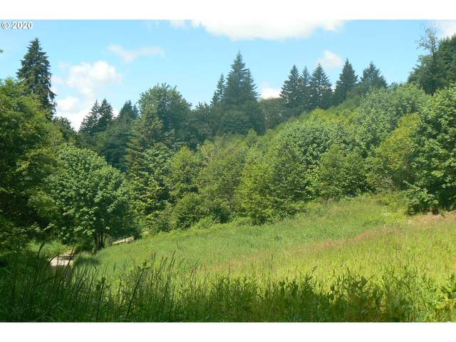 0 NE 431 Appro, Woodland, WA 98674 (MLS #20473813) :: Song Real Estate