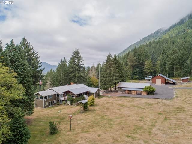 321 Davis Creek Rd, Randle, WA 98377 (MLS #20476287) :: Matin Real Estate Group