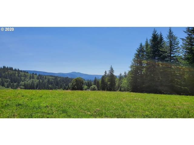 151 Helens Ln, Washougal, WA 98671 (MLS #20483706) :: Next Home Realty Connection