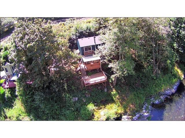 25620 Wilson River Hwy, Tillamook, OR 97141 (MLS #20491258) :: Beach Loop Realty