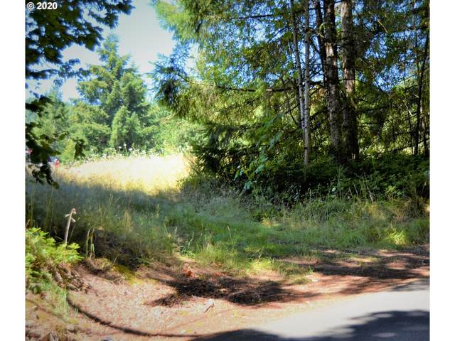 801 Butte Hill Rd, Woodland, WA 98674 (MLS #20491877) :: Song Real Estate