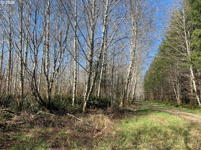Siletz West, Siletz, OR 97380 (MLS #20504418) :: Stellar Realty Northwest