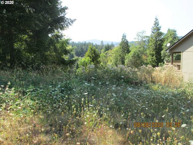 76697 Bugle Loop #900, Oakridge, OR 97463 (MLS #20515992) :: Holdhusen Real Estate Group