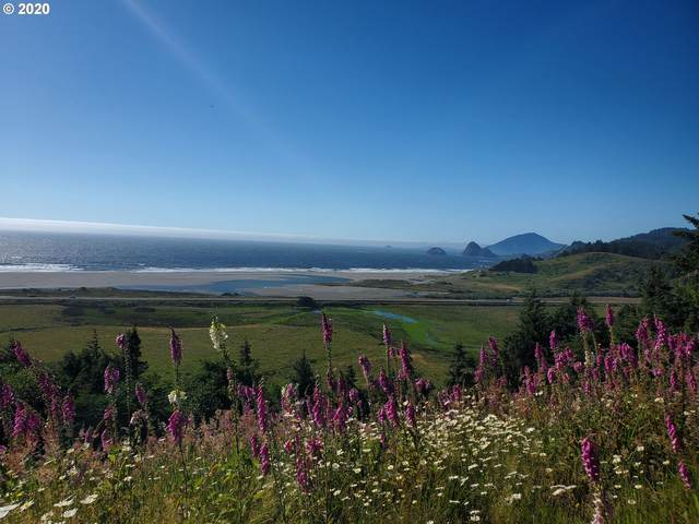 Ophir Rd #400, Gold Beach, OR 97444 (MLS #20523464) :: Change Realty