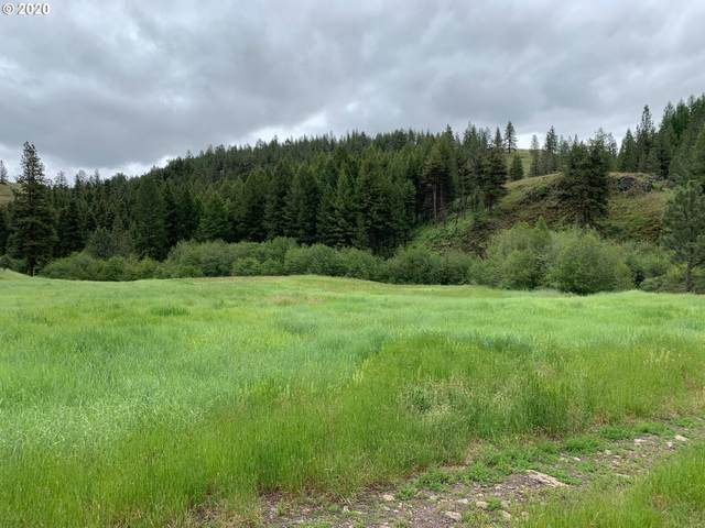 0 Charolais Rd #1100, Enterprise, OR 97828 (MLS #20523545) :: Cano Real Estate