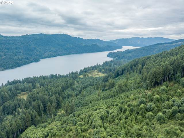 1844 Knights Bridge Rd, Ariel, WA 98603 (MLS #20528469) :: Next Home Realty Connection