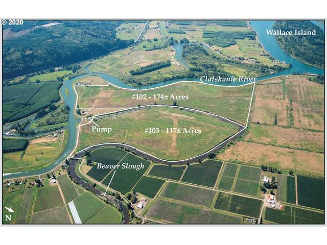 Erickson Dike Road, Clatskanie, OR 97016 (MLS #20531353) :: Next Home Realty Connection