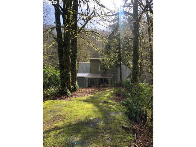 27480 Wilson River Hwy, Tillamook, OR 97141 (MLS #20531514) :: Lucido Global Portland Vancouver