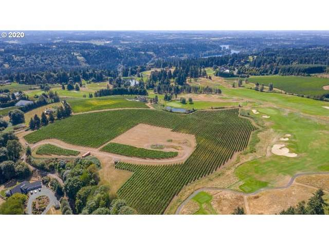 25350 SW Petes Mountain Rd, West Linn, OR 97068 (MLS #20536784) :: Premiere Property Group LLC