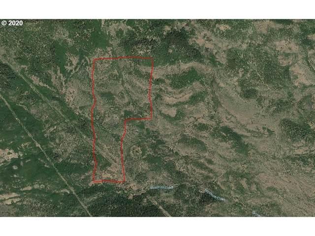 0 Soda Mountain Rd, Ashland, OR 97520 (MLS #20539833) :: Gustavo Group