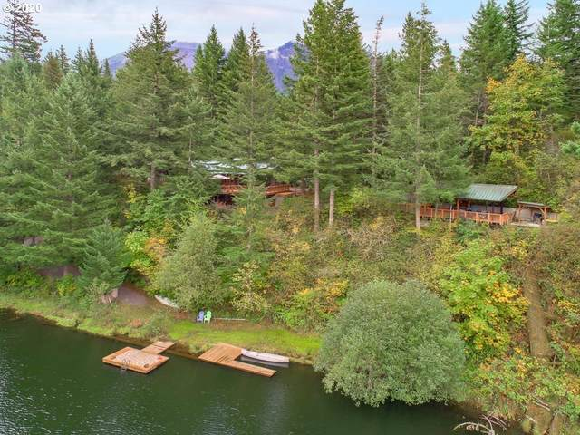 1 Ash Lake Rd, Stevenson, WA 98648 (MLS #20543926) :: McKillion Real Estate Group