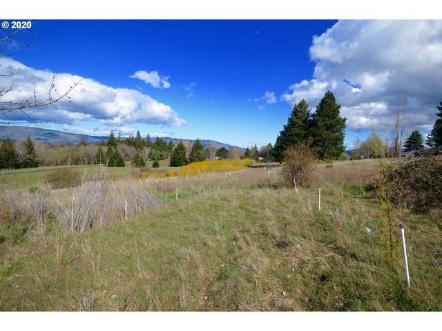Country Club Rd, Hood River, OR 97031 (MLS #20549660) :: Next Home Realty Connection