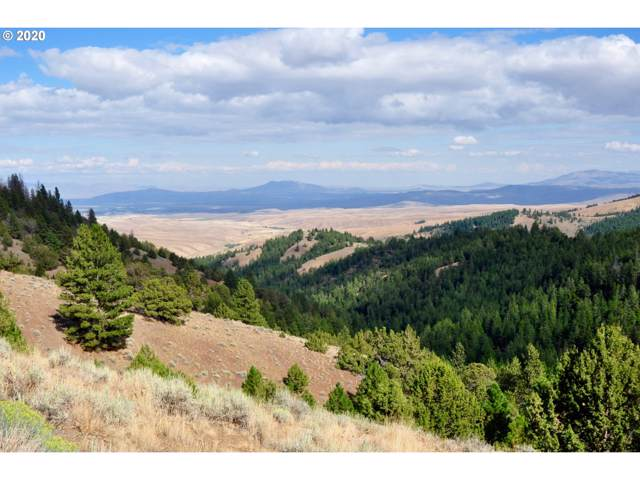 Highway 26, Ironside, OR 97908 (MLS #20561173) :: RE/MAX Integrity