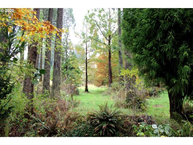 40104 Lahti Ln, Astoria, OR 97103 (MLS #20562147) :: The Galand Haas Real Estate Team