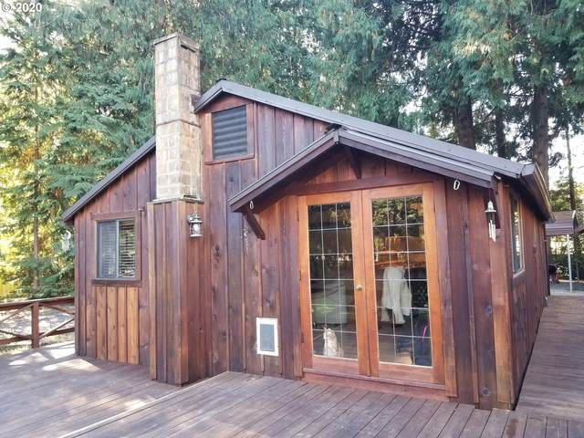 32137 S Shady Dell Rd, Molalla, OR 97038 (MLS #20572118) :: Lux Properties