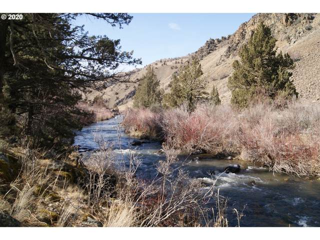 Burnt River Canyon, Durkee, OR 97905 (MLS #20572231) :: Piece of PDX Team