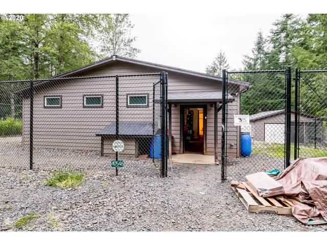 40546 Deerhorn Rd, Springfield, OR 97478 (MLS #20572667) :: Song Real Estate