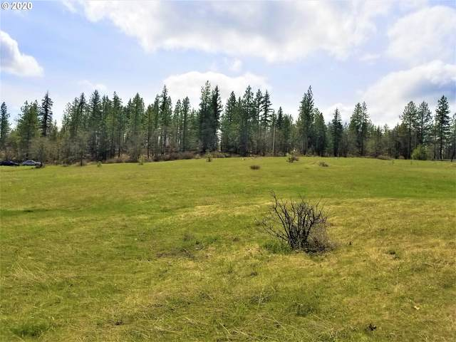 Wahkiacus Heights Rd, Wahkiacus, WA 98670 (MLS #20589261) :: Premiere Property Group LLC