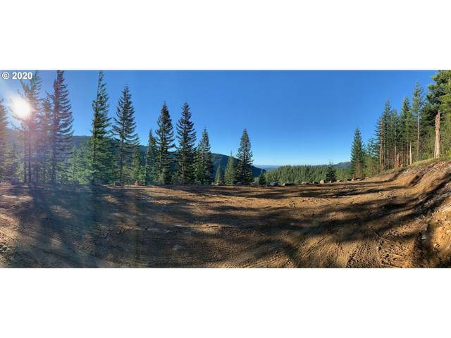 Snag Mountain Rd #101, Washougal, WA 98671 (MLS #20591265) :: Duncan Real Estate Group