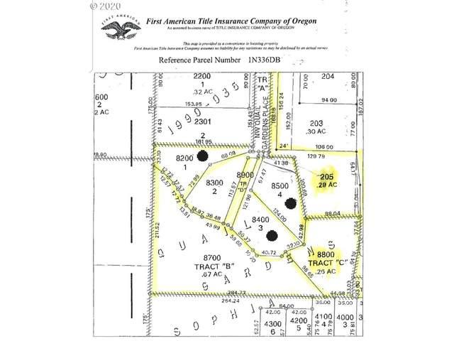 950 NW Jackson St, Hillsboro, OR 97124 (MLS #20592167) :: Premiere Property Group LLC