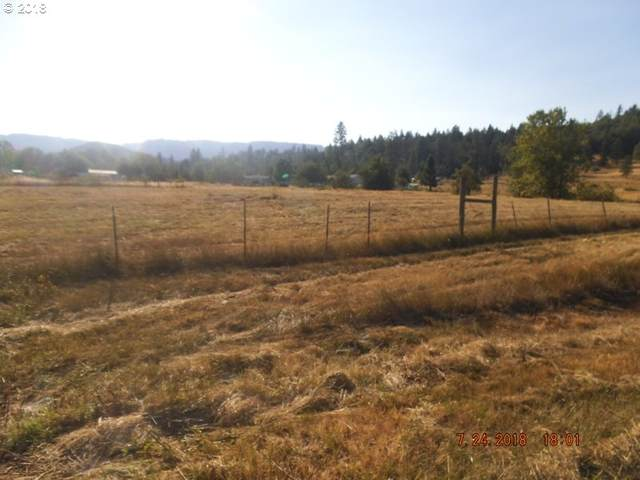 479 Orchard Ln, Roseburg, OR 97471 (MLS #20598217) :: Townsend Jarvis Group Real Estate