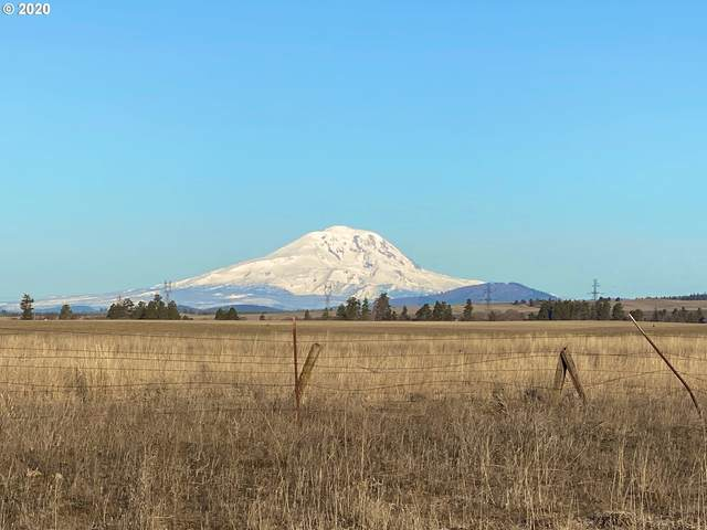 Mesecher Rd #500, Goldendale, WA 98620 (MLS #20604000) :: Premiere Property Group LLC