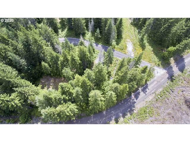 Lahar Ln #10, Cougar, WA 98616 (MLS #20612840) :: Premiere Property Group LLC