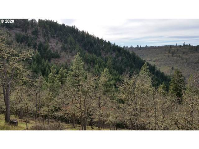 Lovers Ln, Klickitat, WA 98628 (MLS #20614348) :: Premiere Property Group LLC