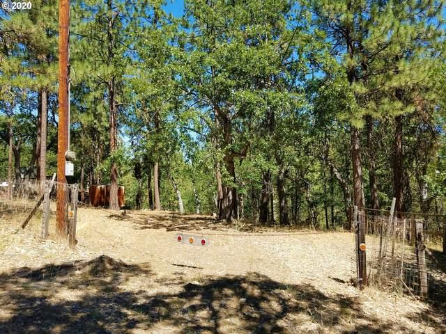 184 N Keg Rd, Wamic, OR 97063 (MLS #20617624) :: Holdhusen Real Estate Group