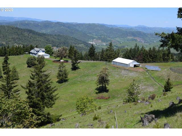 541 Dawson Rd, Roseburg, OR 97470 (MLS #20619294) :: Townsend Jarvis Group Real Estate