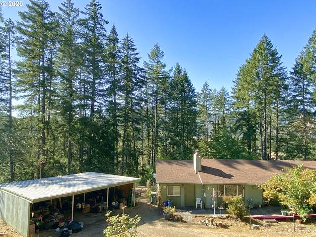 311 Smethwick Dr, Umpqua, OR 97486 (MLS #20624222) :: Townsend Jarvis Group Real Estate