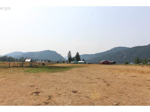 1 Upper Diamond Ln, Wallowa, OR 97885 (MLS #20636731) :: Beach Loop Realty