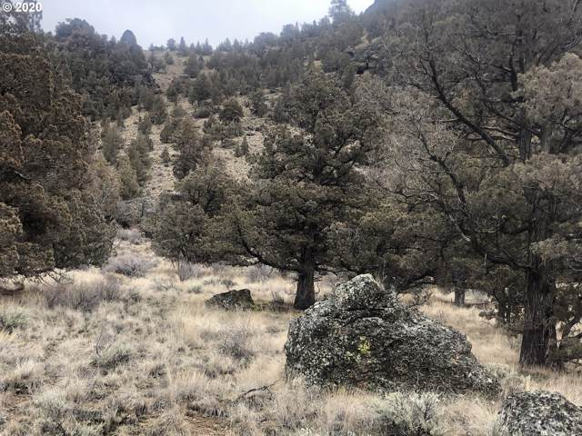 SE Antelope Creek Dr, Prineville, OR 97754 (MLS #20640432) :: McKillion Real Estate Group