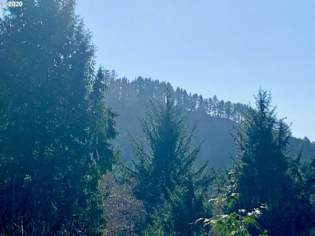 Raven Hill Rd #1, Arch Cape, OR 97102 (MLS #20650826) :: Song Real Estate