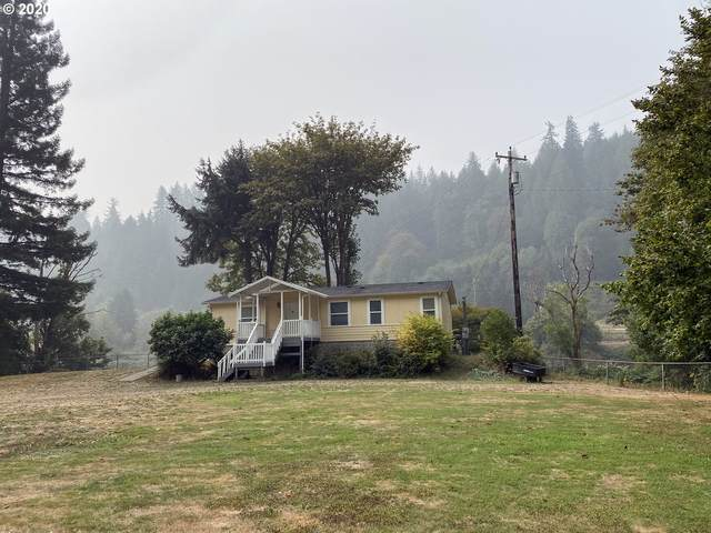 11035 E Mapleton Rd, Mapleton, OR 97453 (MLS #20661502) :: Townsend Jarvis Group Real Estate