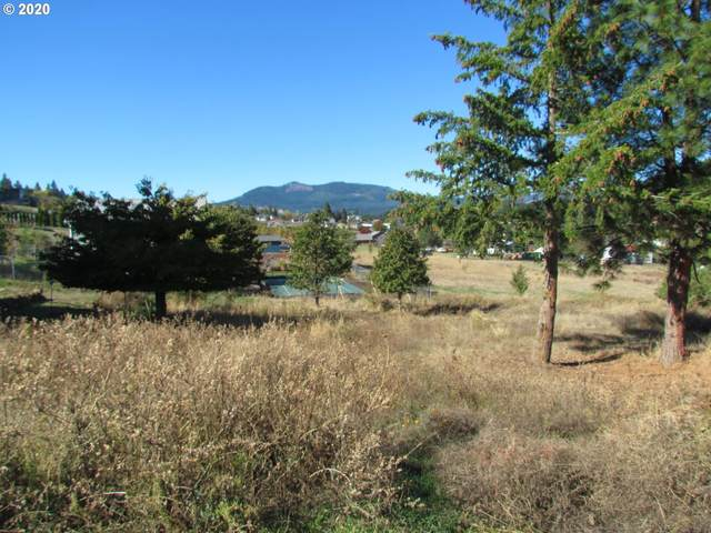 Champion Ln #1, White Salmon, WA 98672 (MLS #20664259) :: Beach Loop Realty