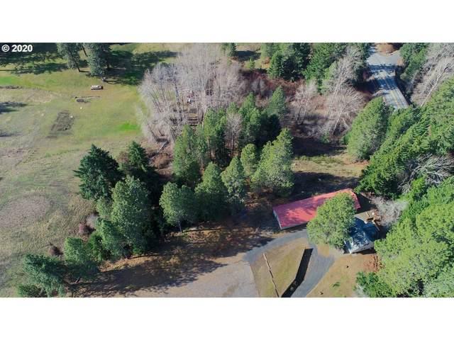 Hwy 141, Husum, WA 98623 (MLS #20666861) :: McKillion Real Estate Group