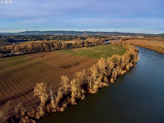 0 Ash Island, Newberg, OR 97132 (MLS #20668886) :: McKillion Real Estate Group
